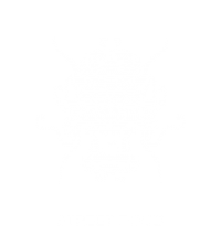 EnterTheDragon-Muenchen-StreetFood